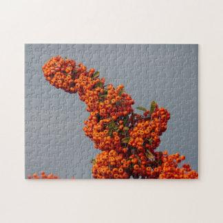 Beeren-Niederlassungs-Puzzlespiel Puzzle