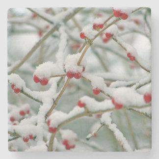 Beeren-Winter-Szene Snowy rote Steinuntersetzer