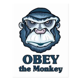 Befolgen Sie den Affen Postkarte