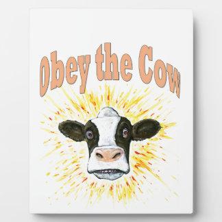 Befolgen Sie die Kuh Fotoplatte
