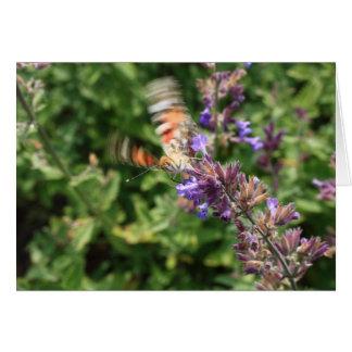 Beginnen des Schmetterlinges Karte