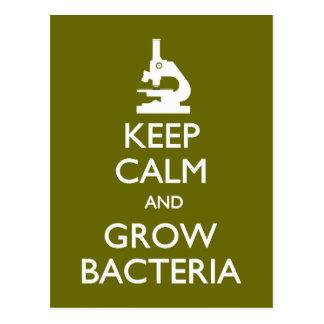 Behalten Sie Ruhe, Bakterienpostkarte zu wachsen Postkarte