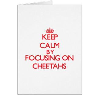 Behalten Sie Ruhe, indem Sie auf Cheetahs sich Karte