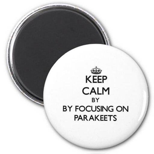 Behalten Sie Ruhe, indem Sie auf Parakeets sich Kühlschrankmagnete