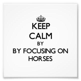 Behalten Sie Ruhe, indem Sie auf Pferde sich Foto