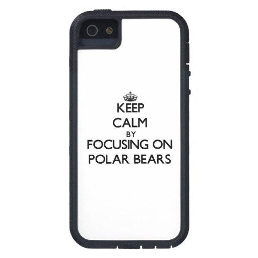 Behalten Sie Ruhe, indem Sie auf polare Bären sich iPhone 5 Schutzhüllen