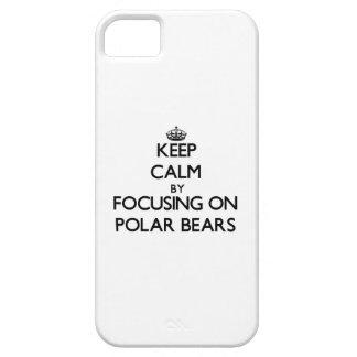 Behalten Sie Ruhe, indem Sie auf polare Bären sich iPhone 5 Etuis