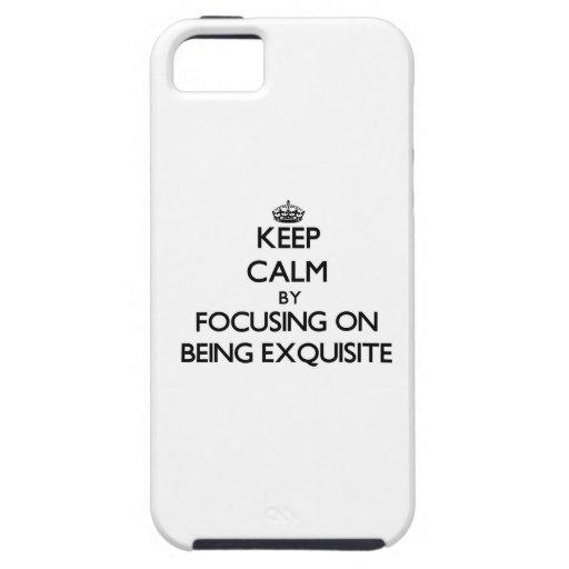 Behalten Sie Ruhe, indem Sie auf SEIN VORZÜGLICH iPhone 5 Etui