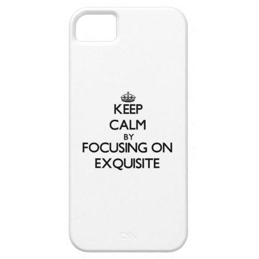 Behalten Sie Ruhe, indem Sie auf VORZÜGLICHES sich iPhone 5 Hüllen
