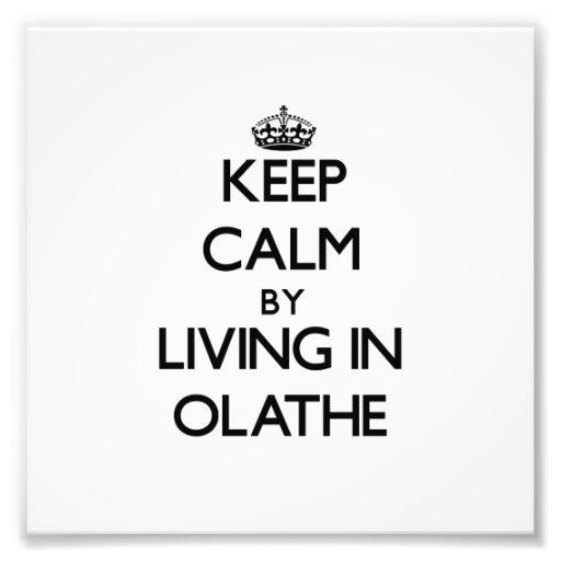 Behalten Sie Ruhe, indem Sie in Olathe wohnen Fotografien
