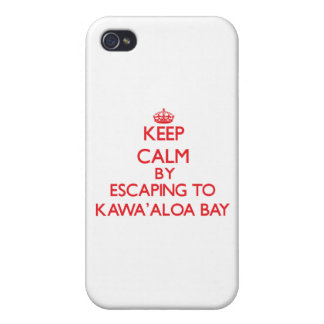 Behalten Sie Ruhe indem Sie zu Kawa Aloa Bucht iPhone 4/4S Hülle