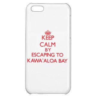 Behalten Sie Ruhe indem Sie zu Kawa Aloa Bucht iPhone 5C Hüllen