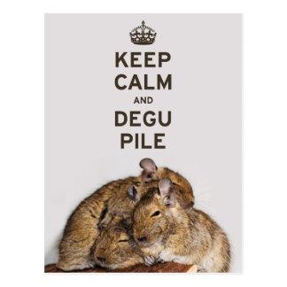 Behalten Sie Ruhe und Degu Stapel Postkarte