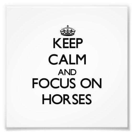 Behalten Sie Ruhe und Fokus auf Pferden Kunstfoto