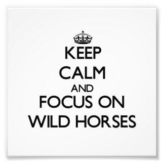 Behalten Sie Ruhe und Fokus auf wilden Pferden Photodrucke