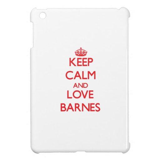 Behalten Sie Ruhe und Liebe Barnes iPad Mini Hülle