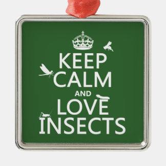 Behalten Sie Ruhe-und Liebe-Insekten (irgendeine Silbernes Ornament