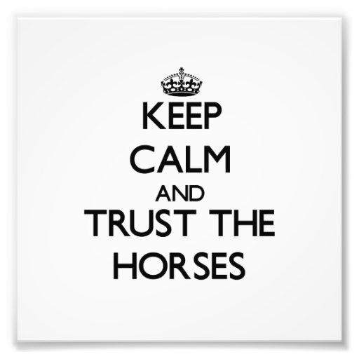 Behalten Sie Ruhe und vertrauen Sie den Pferden Fotografischer Druck