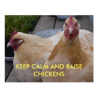 Behalten Sie ruhige und Erhöhungs-Huhn-Postkarte Postkarte