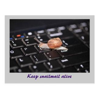 Behalten Sie snail mail lebendig Postkarte