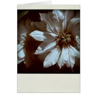 Beileid-Beileids-Anmerkungskarte des Clematis-2 Grußkarte