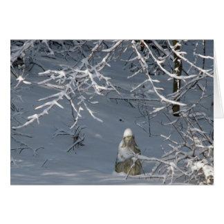 Beileid - Winter Madonna Karte