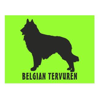 Belgier Tervuren Postkarte