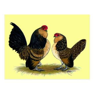 Belgische d'Anvers Zwerghühner:  Wachteln Postkarte
