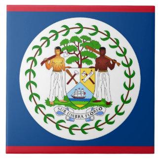 Belize-Flaggen-Fliese Fliese