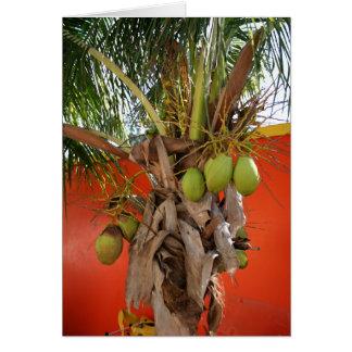 Belize-Palme Karte