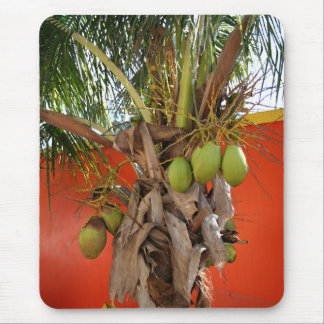 Belize-Palme Mauspad