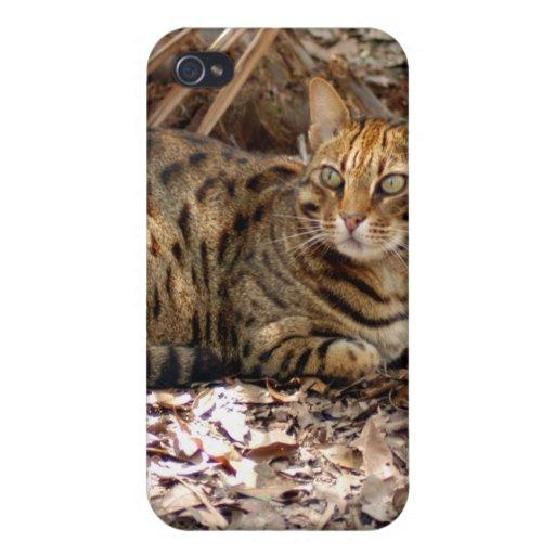 Bengalische Katze I iPhone 4/4S Case