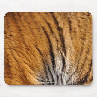 Bengalische Tiger-Pelz-große Katzen-wild lebende Mousepad