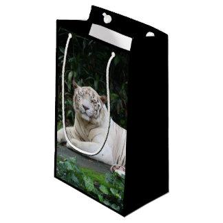Bengalischer Schwarzweiss-Tiger entspannt und Kleine Geschenktüte