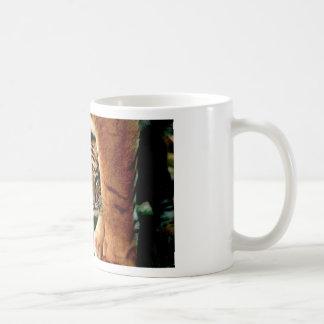 Bengalischer Tiger CUB blickt heraus Kaffeetasse
