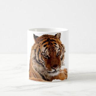 Bengalischer Tiger Kaffeetasse