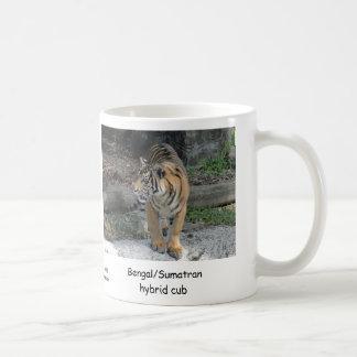 Bengalisches/Sumatran hybrides Tigerjunges Kaffeetasse