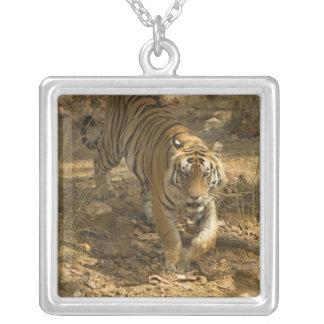 Bengalisches Tigergehen Versilberte Kette