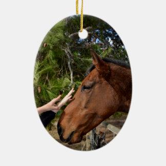 Bennie das Pferd, das ein Pat liebt, Keramik Ornament