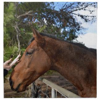 Bennie das Pferd, das ein Pat liebt Stoffserviette
