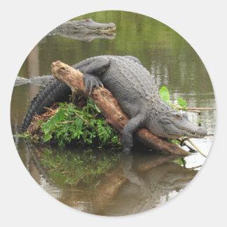 Bequeme gemütliche Alligatoraufkleber Runder Aufkleber