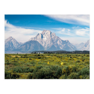 Berg Moran in großartigem Teton Nationalpark Postkarte