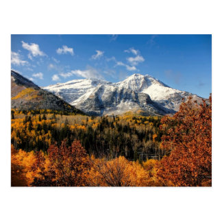 Berg Timpanogos in Herbst-Utah-Bergen Postkarte
