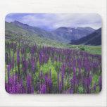 Berge und Wildblumen in der alpinen Wiese, 2 Mousepad