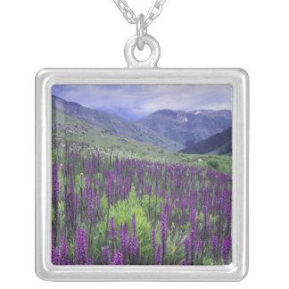 Berge und Wildblumen in der alpinen Wiese, 2 Versilberte Kette