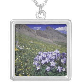 Berge und Wildblumen in der alpinen Wiese, blau Versilberte Kette