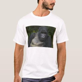 Berggorilla und Silverback 5 T-Shirt