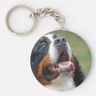 Berner Sennenhund Hund Keychain Schlüsselanhänger