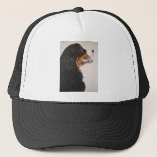 Bernese Gebirgshund 2 Truckerkappe