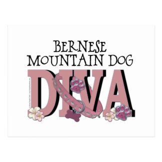Bernese Gebirgshund-DIVA Postkarte